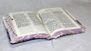 Новые Библии 2018_21